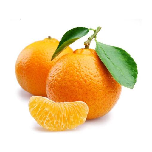 Picture of Mandarin Orange