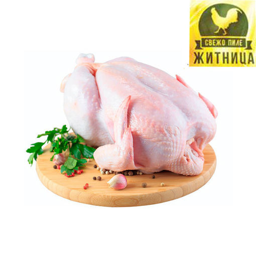 Picture of Fresh Chicken Zitnica